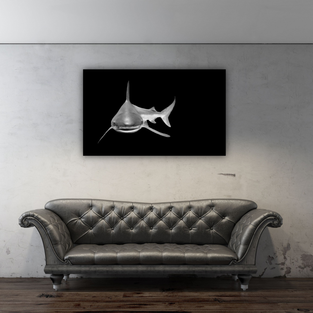 "NEW LIMITED EDITION!  24""x40"" ARTISTIC SHARK"